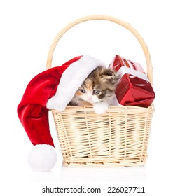 small kitten with red hat and gift in basket. isolated on white background