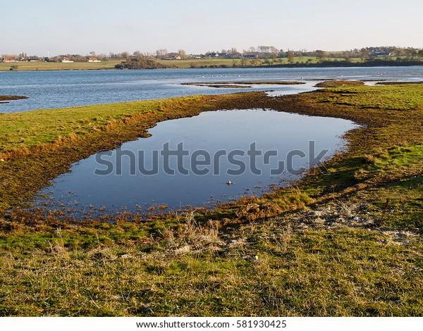 Small lake birding nature reserve West Funen Denmark