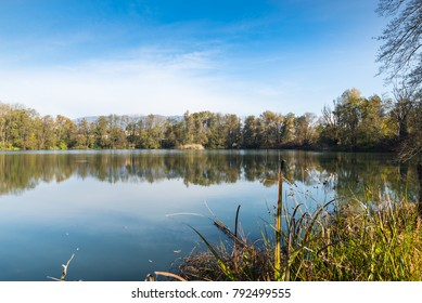 Small lake called pond or quarry of the Furnaces at the nature reserve Brabbia marsh. The Brabbia marsh is recognized as a wetland of international importance from 1984, province of Varese, Italy