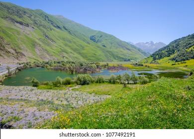 Small lake with flooded trees in Sno, Kazbegi mountains, Georgia