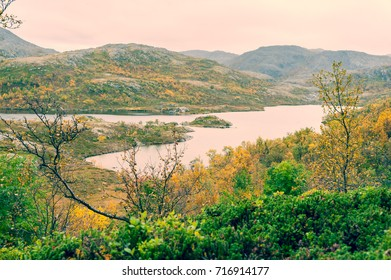 Small lake or loch in the Scottish highlands surrounded by vegetation