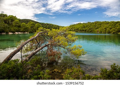 Small Lake (Malo jezero) in Mljet National Park on Mljet island, Croatia.