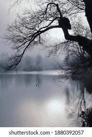 Ein kleiner See bei München an einem nebligen Tag