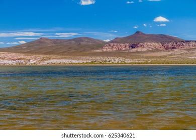 Small lake on bolivian altiplano