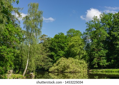 Small lake in the park in sunshine with reflections in the water
