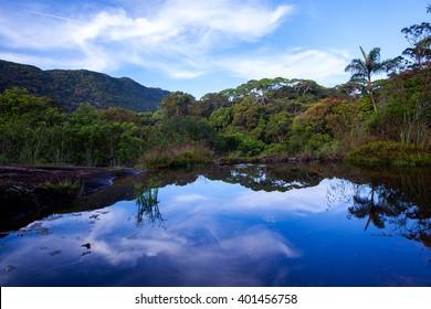 Small lake in Sinharaja rainforest with sky reflection, Sri Lanka