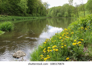 A small lake in the spring