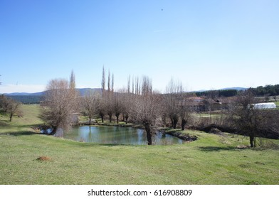 Small lake in a village