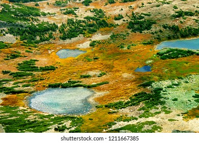 Small lakes dot the landscape of Medicine Bow National Forest in Wyoming