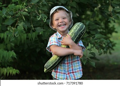A small laughing emotional boy is busy harvesting. The kid in the plaid shirt is pleased with helping his father work on the farm.