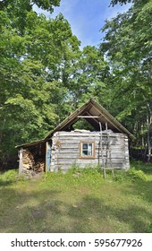 The small log cabin in forest.