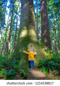 Small male child hugging a large Sitka Spruce tree.