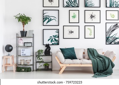 Small metal rack with plants and cat shaped clock standing next to wooden couch with green coverlet