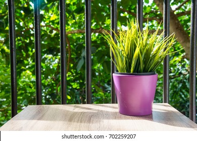 small mock up plant on the wooden table at the terrace or balcony of hotel in the morning. copy space for text.