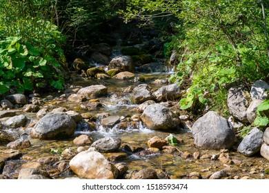 Small mountain river in High Tatras