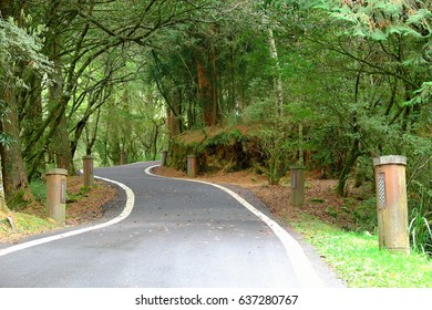 Small mountain road