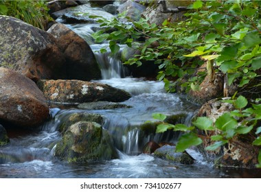 A small mountain stream flowing over rocks.