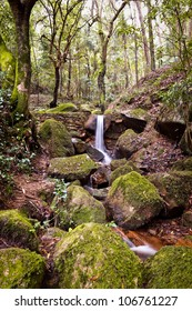 Small natural waterfall in the national park Sintra-Cascais.