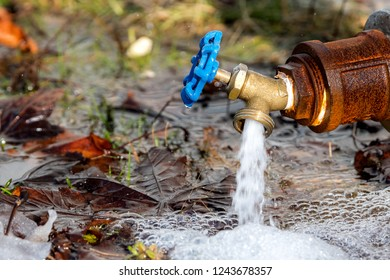 A small outdoor brass tap gushing water. The tap has a blue handle and is attached to a rusty pipe. It is very close to the ground.