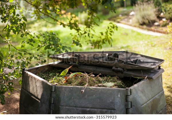 Small Outdoor Composting Bin Recycling Kitchen Stock Photo ...
