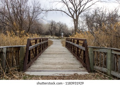 Small park bridge in the fall