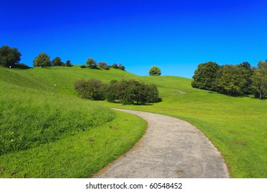 Small path in the green forest with blue background