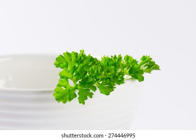 small piece of fresh parsley