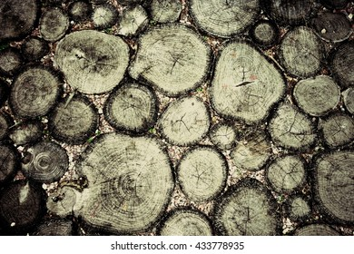 small piece of wood logs, wood texture background