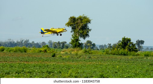 A small plane spreads chemicals and pesticides over the farm fields