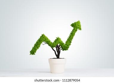 Kleine Pflanze in Topfform, die wie ein Graph wächst