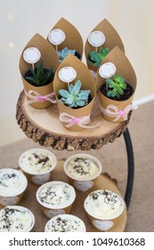 Small plants and cupcakes on a wooden serving plate