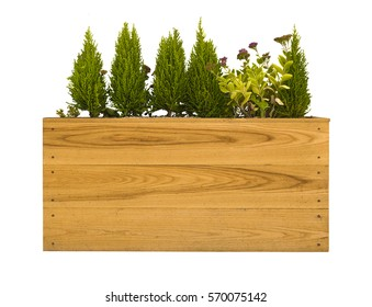 small plants in pots with decoration items placed on a wooden box