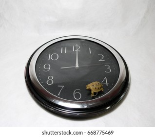 Small plastic turtle on the black clock on white background. The concept of slowly, or Competition with time.