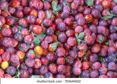 Small plums ( tkemaly) for sale at farmers market. Georgia