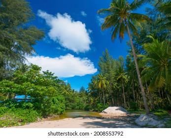 Small pond close to a tropical beach (Coconut beach, Khao Lak, Phang Nga, Thailand) - Shutterstock ID 2008553792