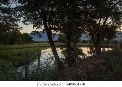 small pond in field early morning trees California