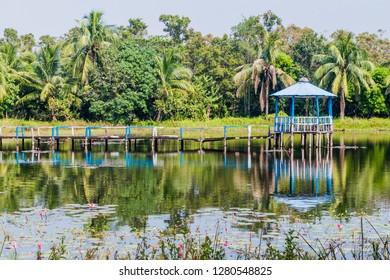 Small pond in Harbaria eco park  in Sundarbans, Bangladesh