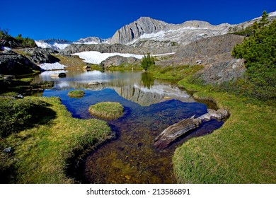 Small pond in meadow at 10,000' elevation, Eastern Sierra, California. In the background is 12,247' North Peak.