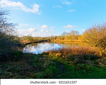 A small pond, with treelined banks, reflects the blue winter sky