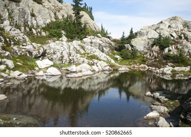 Small pool or tarn in Mount Seymour Provincial Park, North Vancouver, British Columbia, Canada
