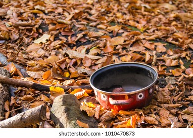 Small pot in autumn forest