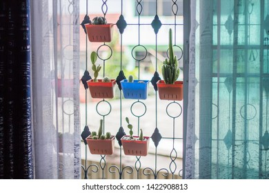 Small potted plants made of colorful plastic, planted cactus, hung on a window with beautiful blue-white curtains.