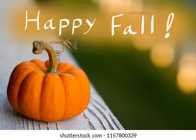 Small Pumpkin with Happy Fall handwriting. Conceptual image for celebrating fall.