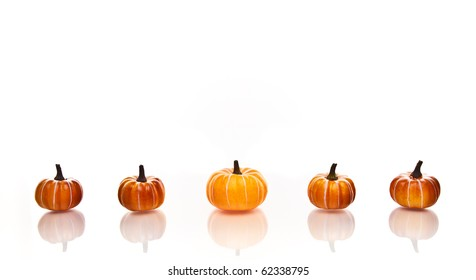 Small pumpkins in a row on a a white background.