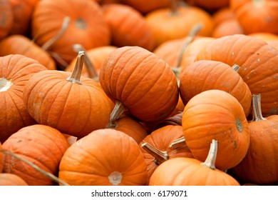 Small pumpkins that can be used as a background