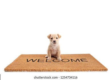 Small puppy dog sitting on a door mat with written text welcome isolated on white background