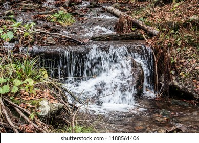 small rapids (cascade) on Kotelnice mountain stream above Jablunkov city in Slezske Beskydy mountains in Czech republic during autumn