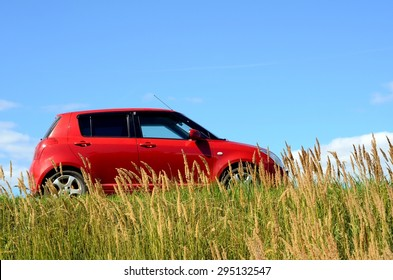small red car at meadow