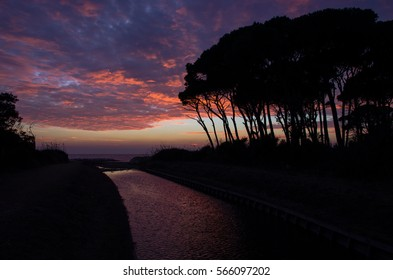 The small river appear of the same purple colour of the sky, during this beautiful sunset on tuscany coast