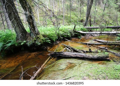 Small river called Varesjoki in the forest at Salo, Finland.